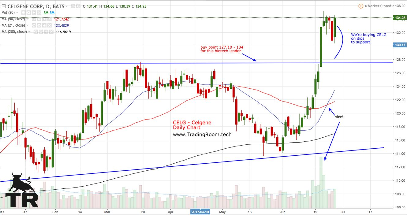 Pin by Trading Room on Stocks Analysis, Chart, Line chart