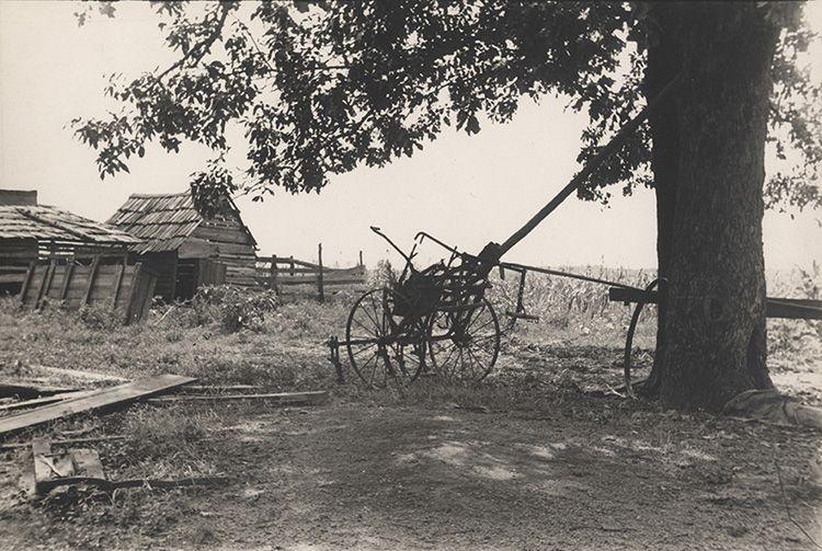 "WALKER EVANS, ""A Sharecropper's Yard,"" Hale County Alabama, Summer 1936, 1936, silver print, printed circa 1936, 5 5/8"" x 8 5/16"""