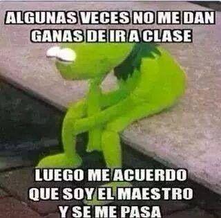 Rana Rene Memes De La Rana Memes De Maestros Memes De Profesores