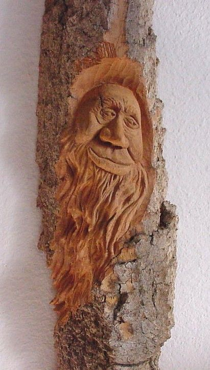 Cottonwood bark quot wishful my wood carvings pinterest