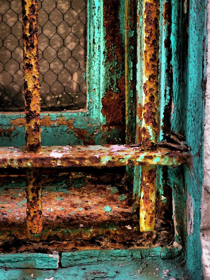 Rusty Cage Photograph - Rusty Cage Fine Art Print