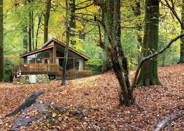 Holiday Cottage In Log Cabin Holidays Gloucestershire Forest Of Dean
