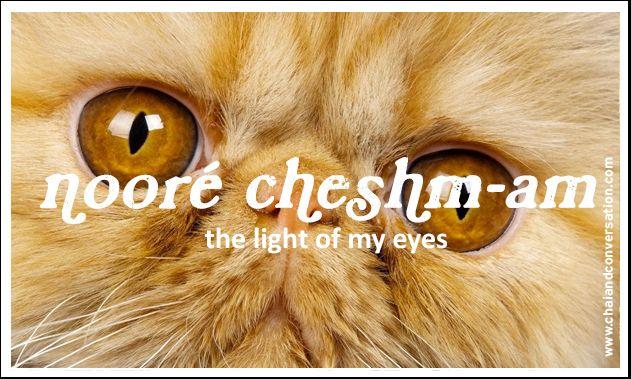 Noore Cheshmam, The Light Of My Eyes  Persian Languege -5175