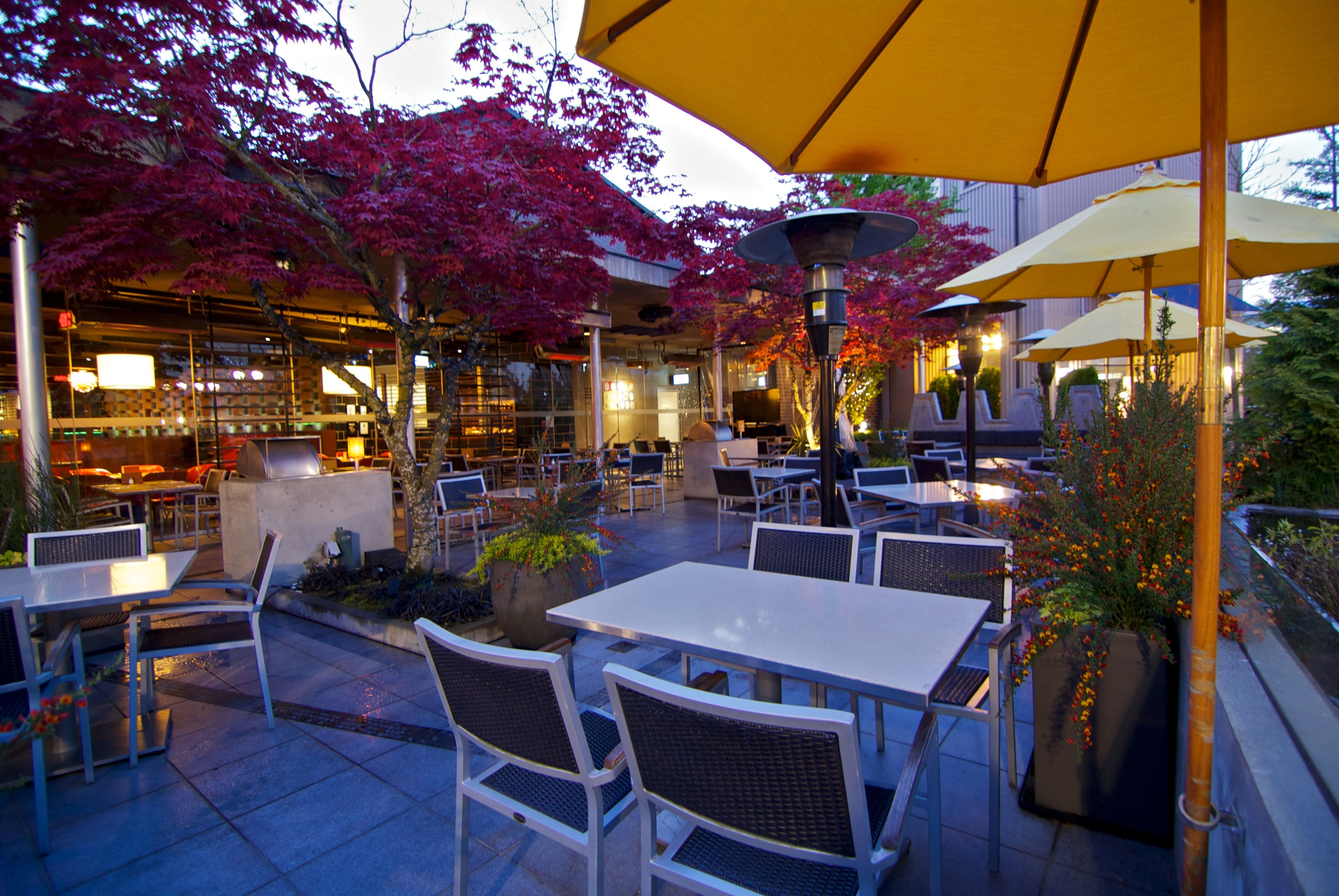 The patio at our Park Royal restaurant in West Vancouver