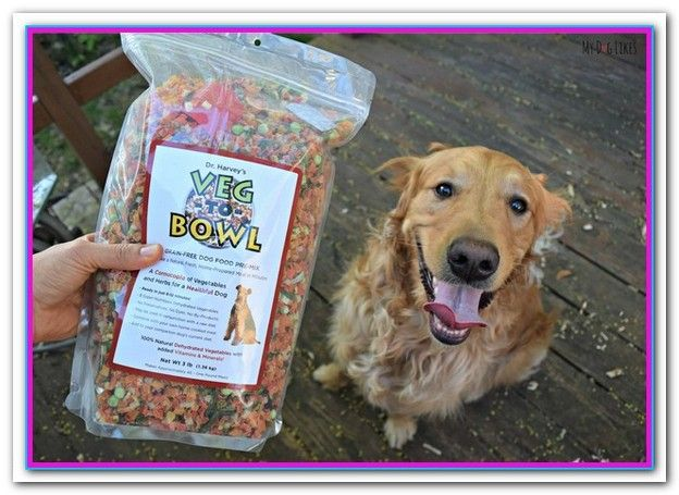 Best Affordable Dog Food For Puppies This Salmon And Sweet