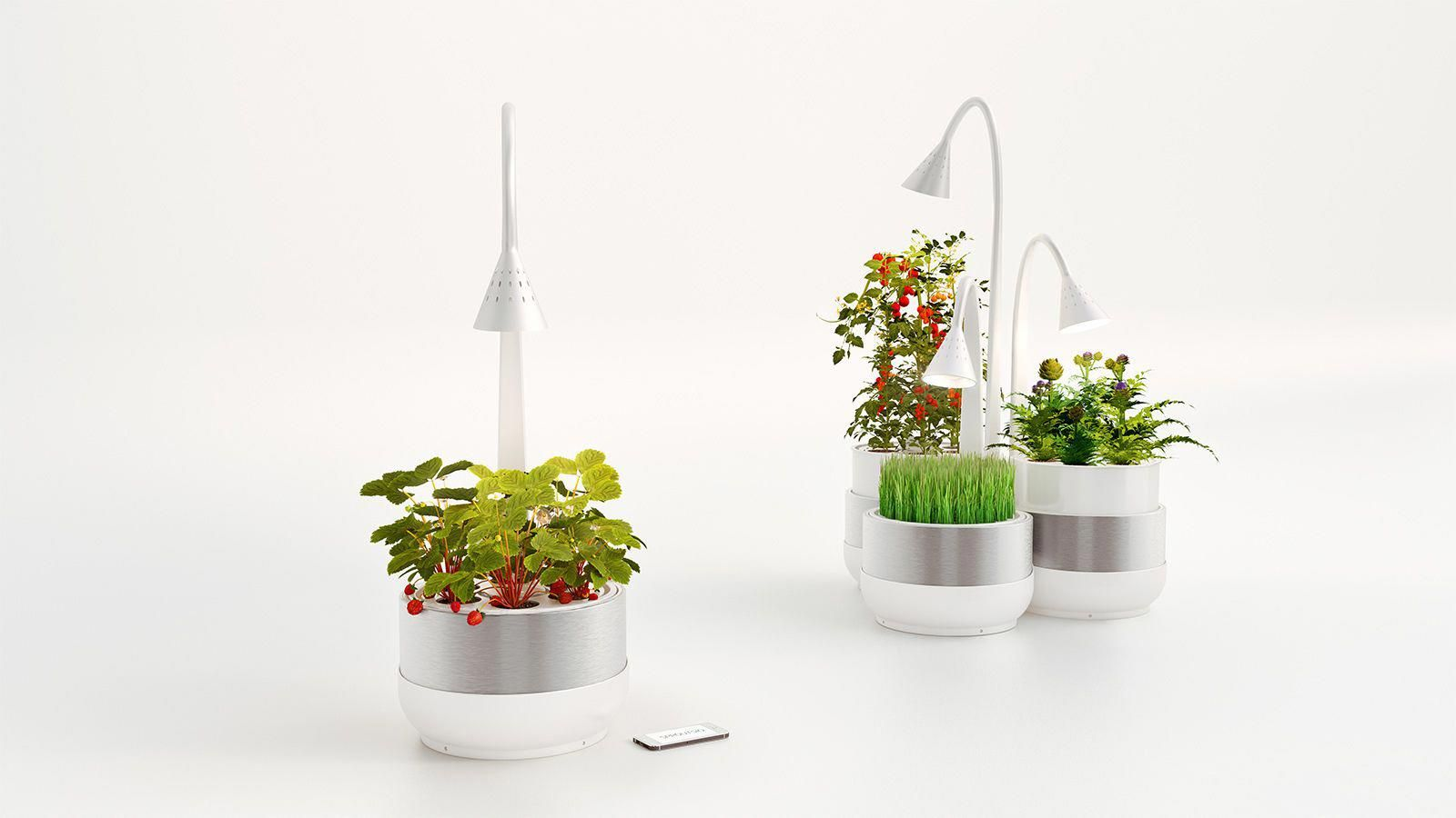 Growing Produce In The Kitchen With An Automated Soil 400 x 300