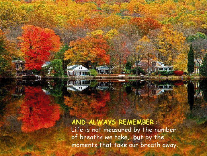 Image result for the joy of autumn quotes