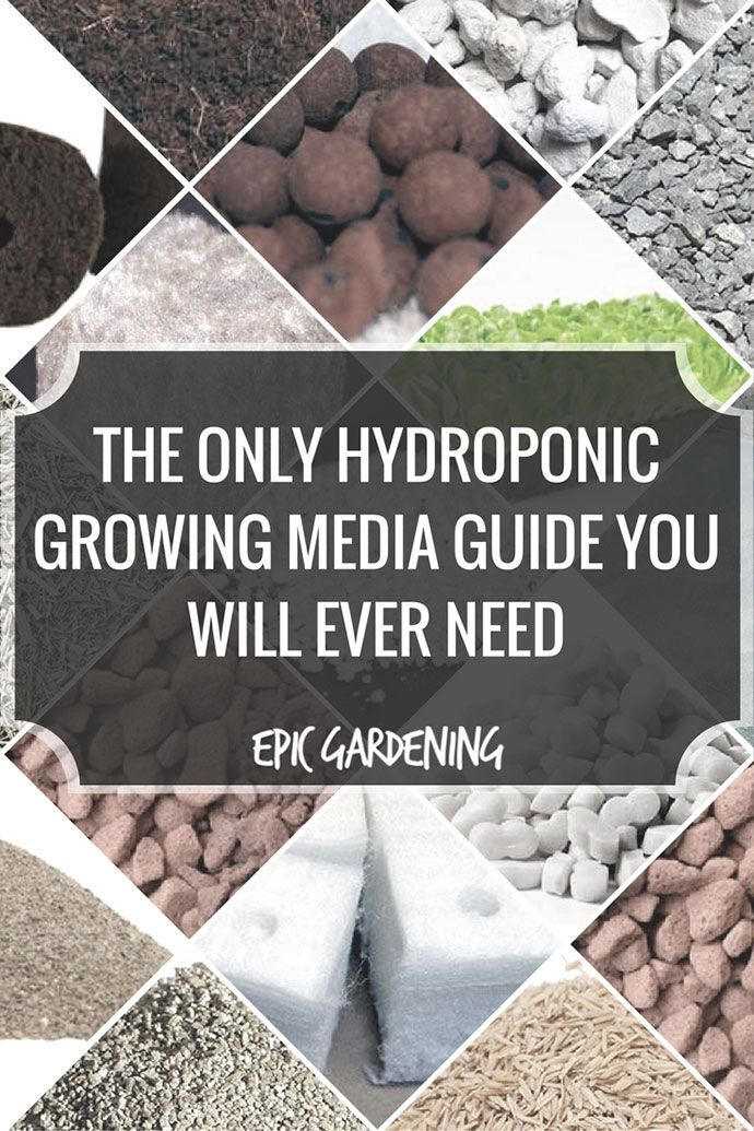 the only hydroponic growing media guide you need container gardening pinterest jardinage. Black Bedroom Furniture Sets. Home Design Ideas