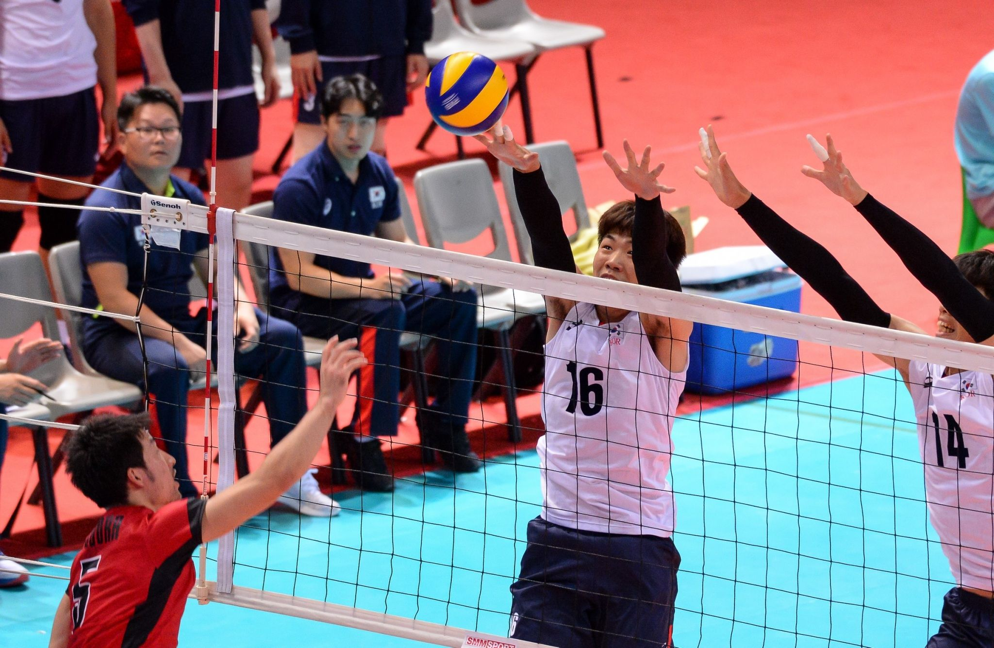 World Volleyball Is Under Construction Korea Men Qatar
