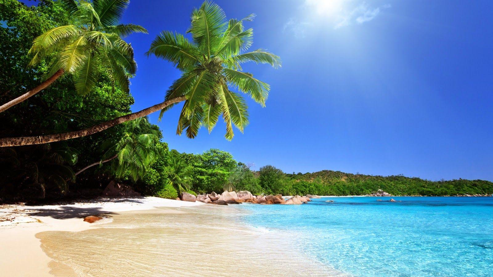 Tropical blue sea clear sky white sand beach view theme hd 1080p tropical blue sea clear sky white sand beach view theme hd 1080p photography wallpaper pixhome voltagebd Choice Image