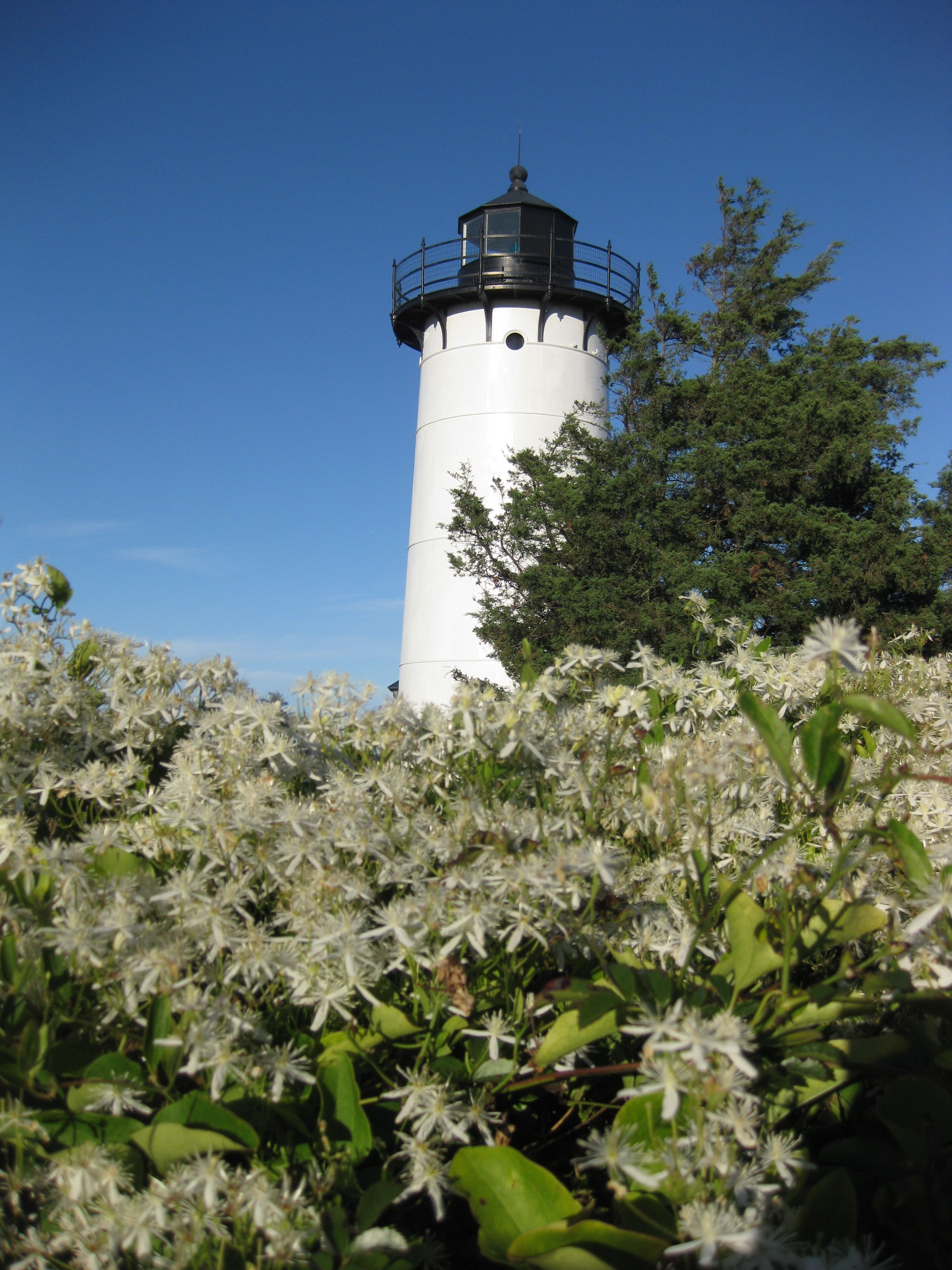East Chop Lighthouse, Martha's Vineyard Marthas vineyard