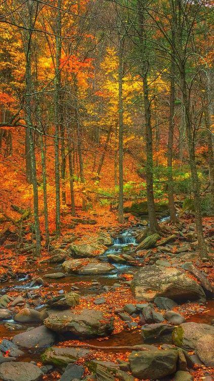 Este paisaje lo pinto Dios.