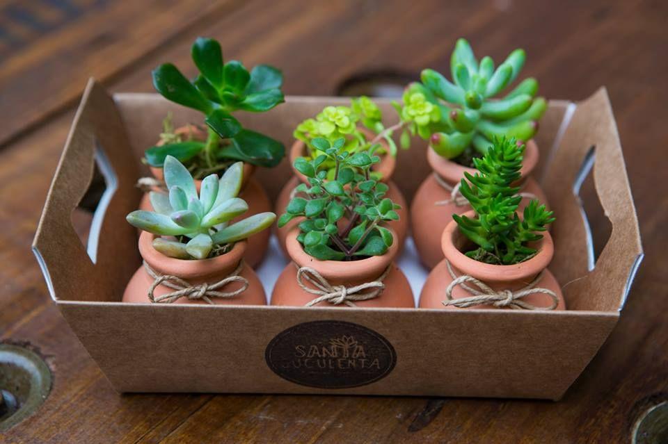 Lembrancinhas para casamento - Mini vasos em cerâmica