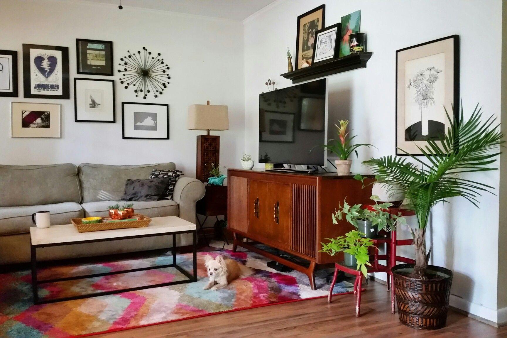 Urban jungle plant gang mid century modern tropical tiny house