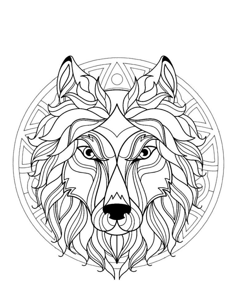 Cane Animale Mandala Da Colorare E Stampare Cerchio Pelo Orecchie