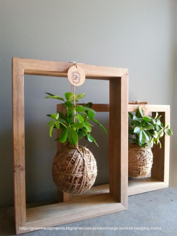 8 ideas para una tener plantas con estilo en tu casa+ Dulce Elite