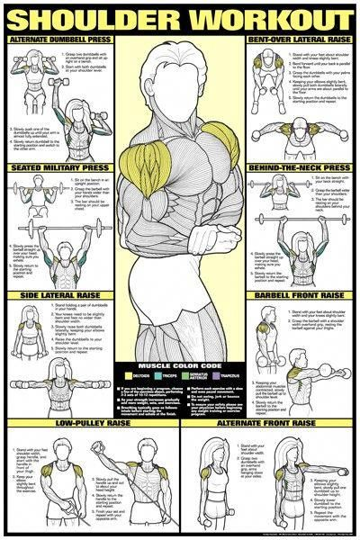 Shoulders are a link to so many other areas such as arms, back, balance... They aren't my favorite p...