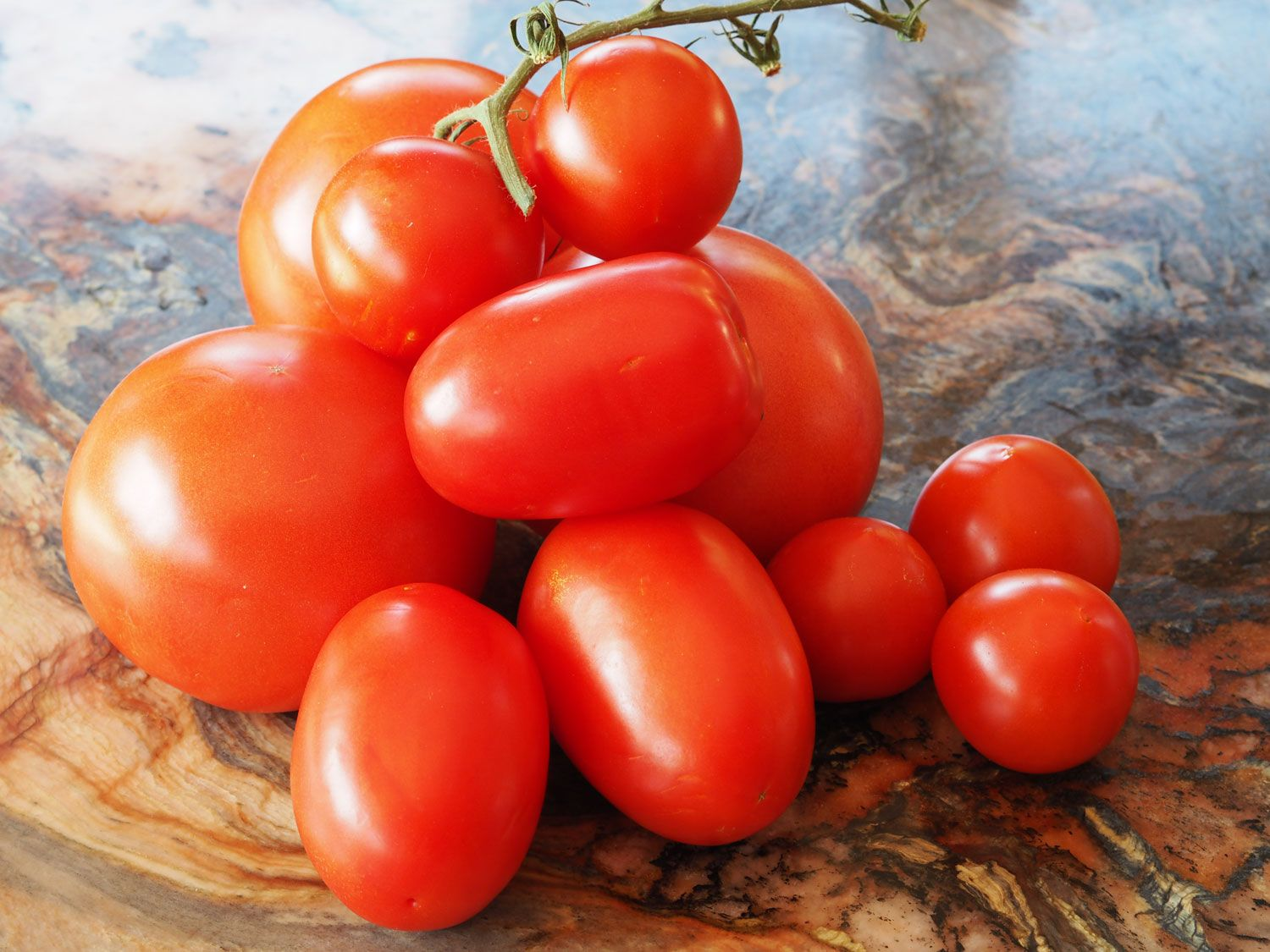 How To Tomatoes And Whether