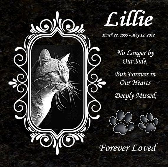 Black Granite Pet Memorial Laser Engraved Pet Plaque Engraved Pet Photograph Lillie Design 12 Granite Pet Memorials Pet Memorials Pet Memorial Stones