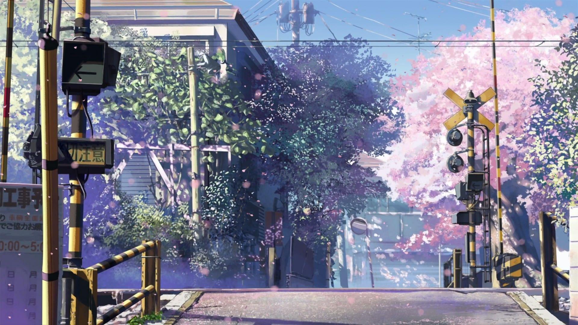 cherry blossoms, 5 Centimeters Per Second Wallpaper No
