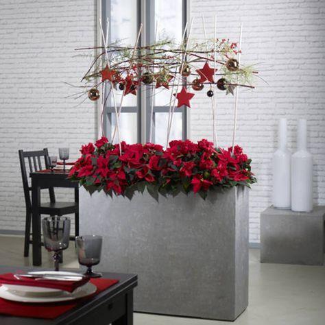bloom 39 s praxis 6 15 floristikideen f r den berufsalltag zu advent und weihnachten. Black Bedroom Furniture Sets. Home Design Ideas
