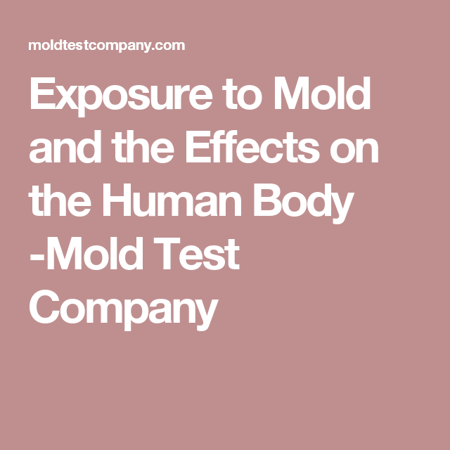 exposure to mold and the effects on the human body mold test company