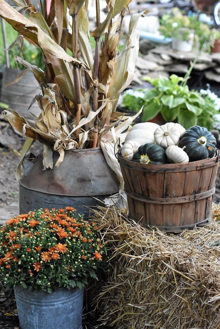 Simple fall outdoor decorating inspiration outdoordecor outdoor
