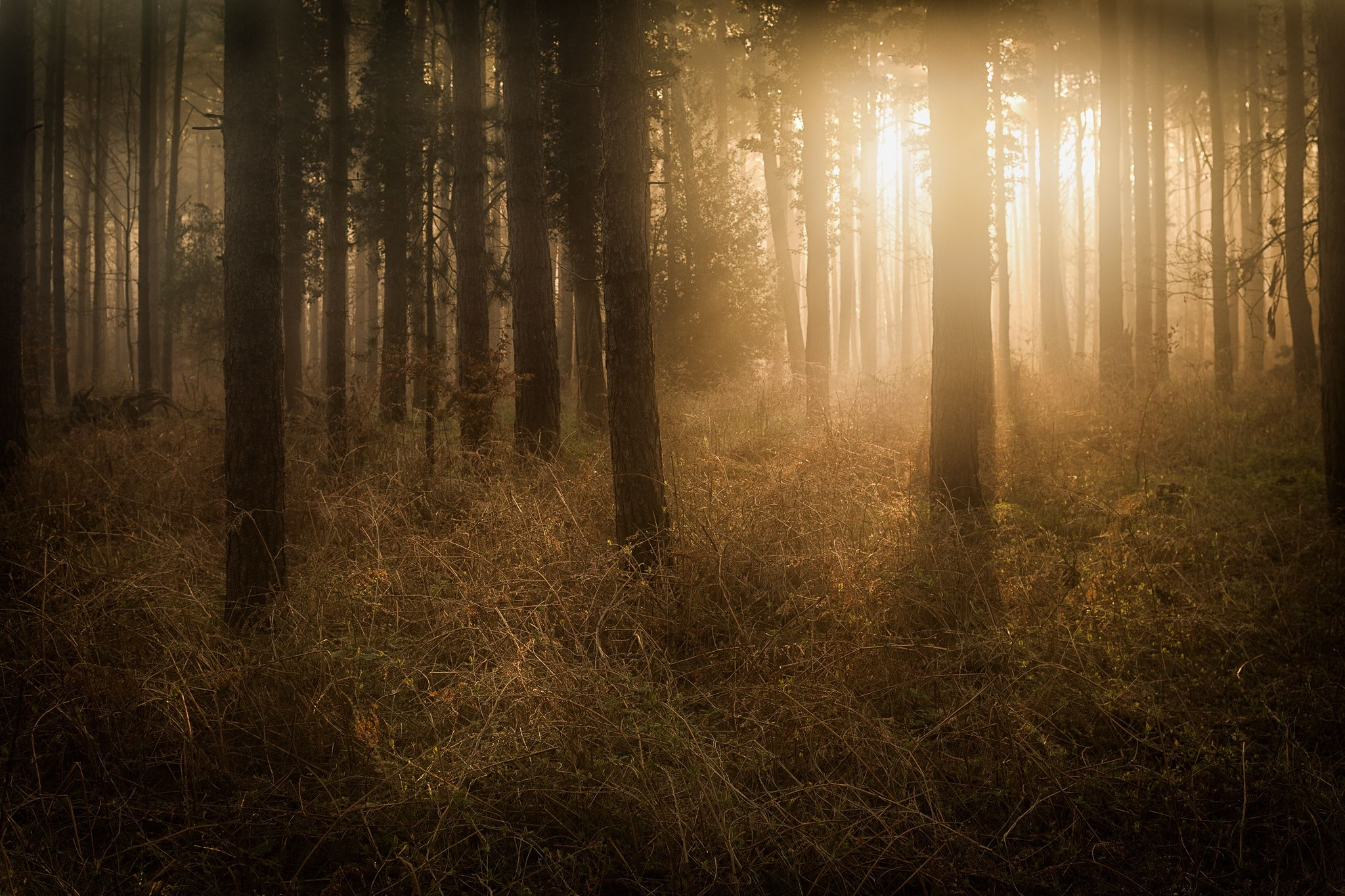 Photo Glory by Lee Acaster on 500px