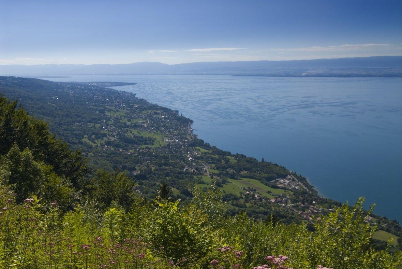 Le Lac Leman Activites Visites Nature Randonnees Pedestres Savoie Mont Blanc Savoie Haute Savoie Alpes Lac Leman Lac Haute Savoie