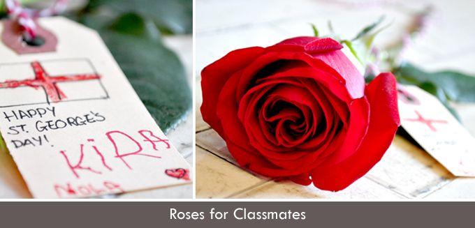 curlybirds.com - Roses for Classmates | Curly Birds