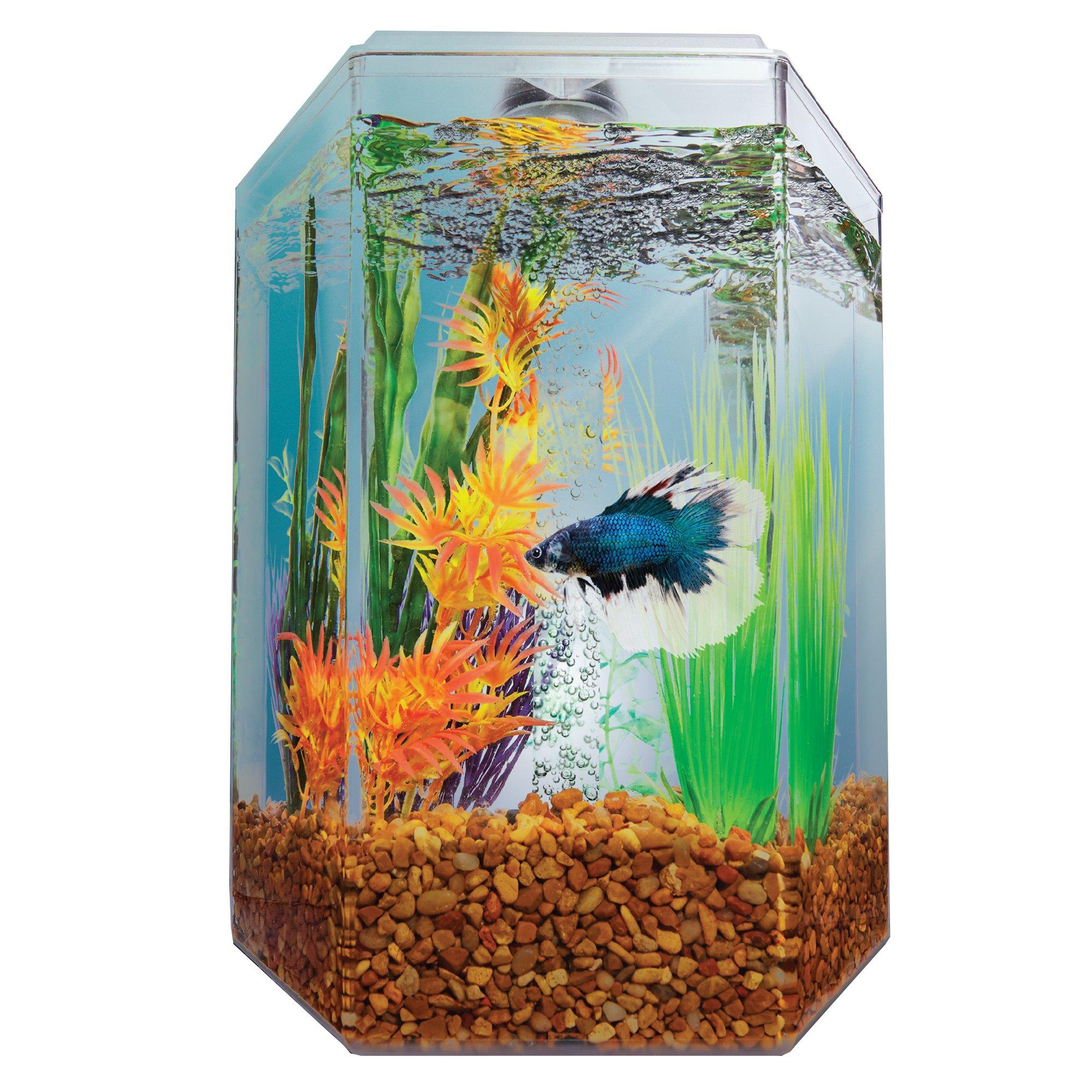 Imagitarium 1 7 Gallon Hexagonal Aquarium Petco In 2020 Aquariums For Sale Betta Petco