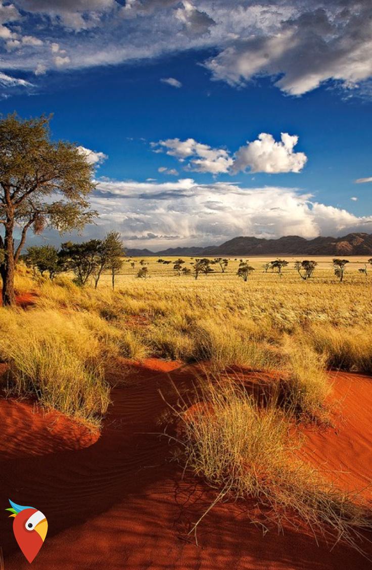 Wunderschönes Afrika zum Megapreis #travel #afrika #wildlife #awesome