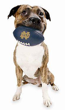 Planet Dog University of Notre Dame Orbee-Tuff Football  9fc18cf56