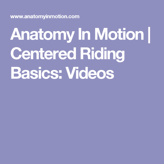Anatomy In Motion Centered Riding Basics Videos Riding
