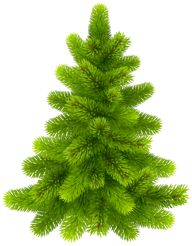 Pine Tree Png Clip Art Best Web Clipart Clip Art Free To Use Images Christmas Tree Decorations