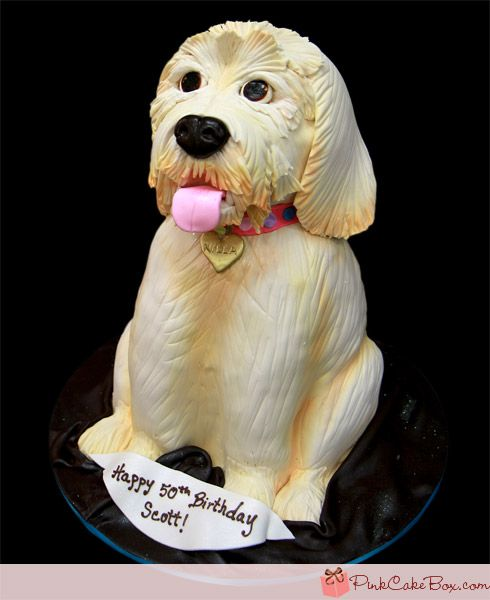 Brilliant Sculpted Dog Suprise Birthday Cake Birthday Cakes With Images Birthday Cards Printable Trancafe Filternl