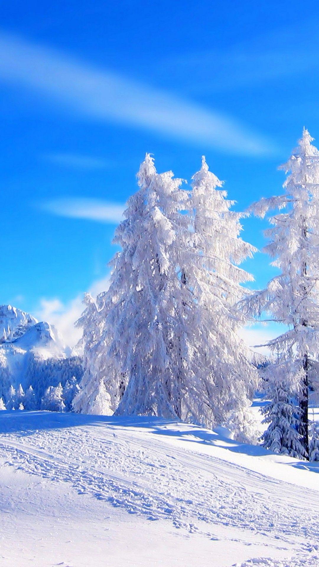 Winter Wonderland Iphone Wallpaper