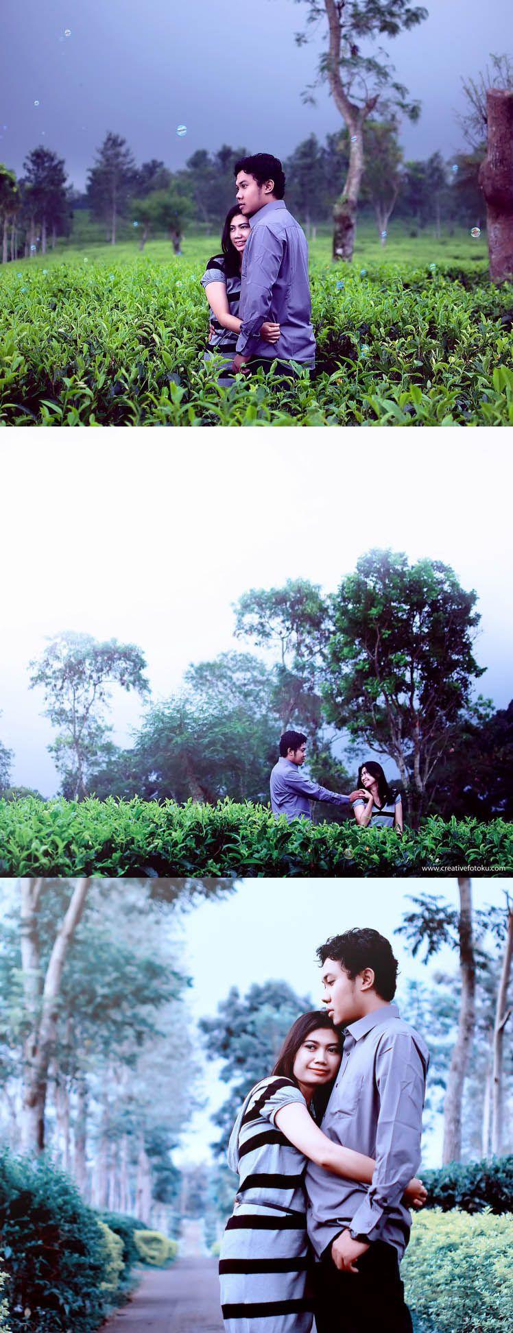Prewedding Kebun Teh Wonosari Lawang Kabupaten Malang Memberikan Pilihan Konsep Foto Prewedding Landscape Yang Bagus