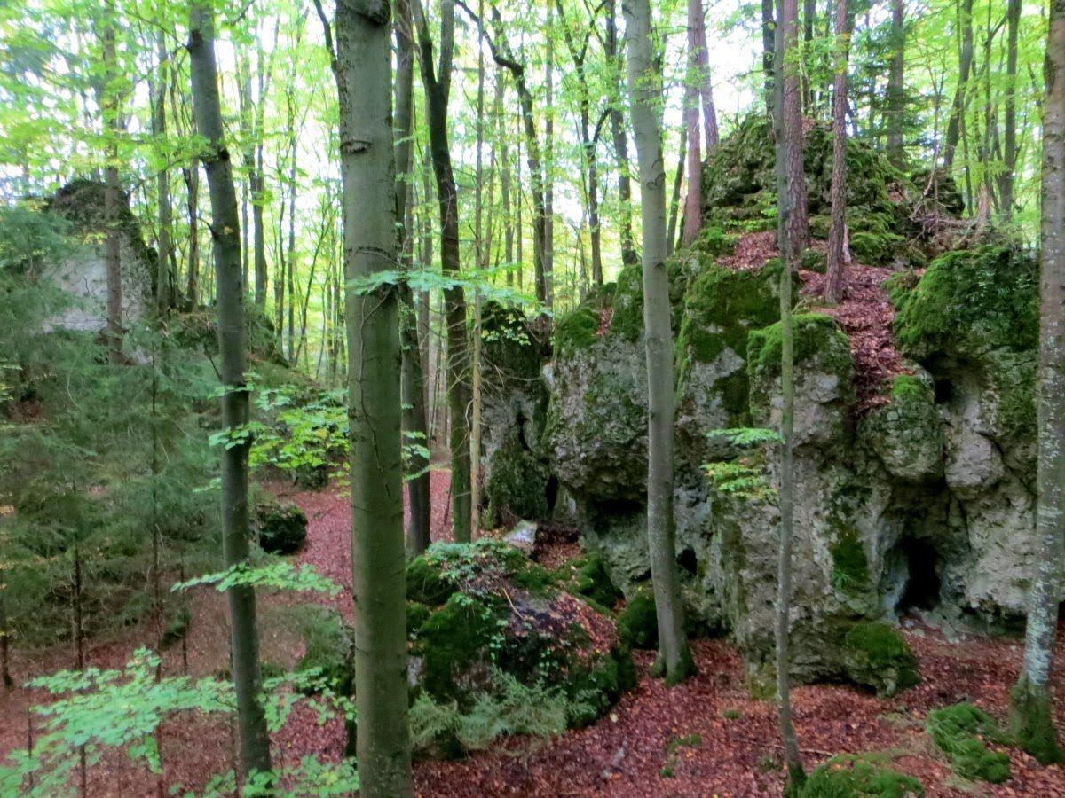 Neuer Film online: Joggingtour bei Allersdorf und Trägweis am 10.10.2015: https://www.youtube.com/watch?v=8EKddit0hhI