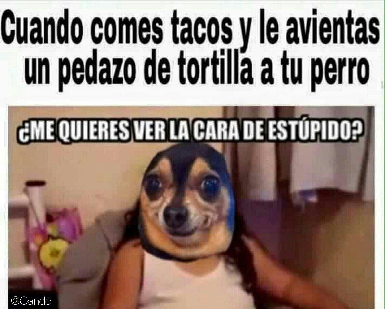 Jajajaa Memes Memes Divertidos Memes Graciosos