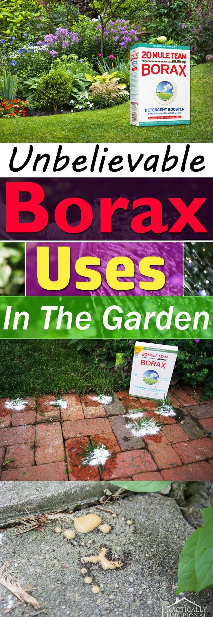 Is Borax Safe For Vegetable Gardens