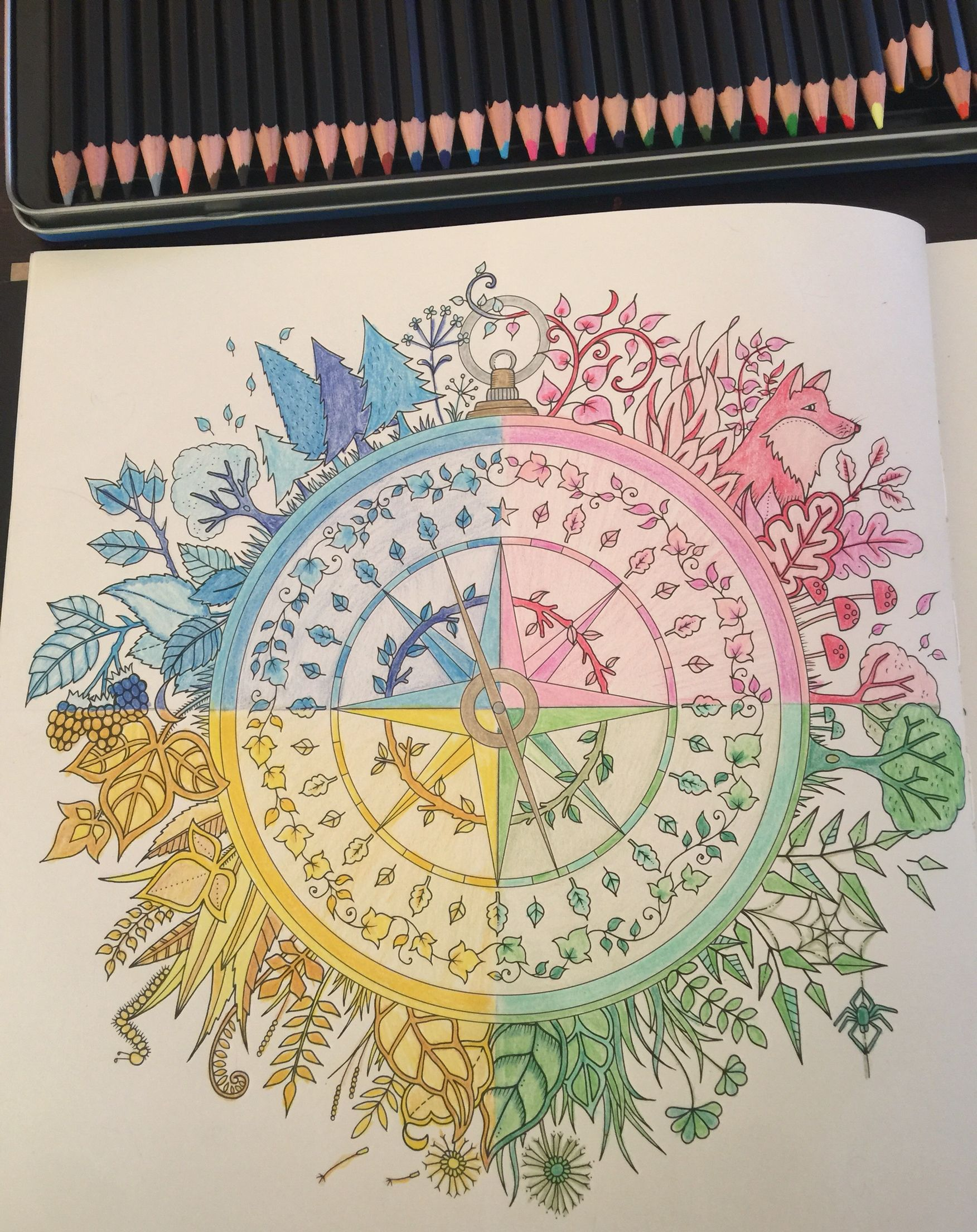 Enchanted Forest Coloring Book Compass Colored By Amber Using Monte Marte Pencils 36 Tin