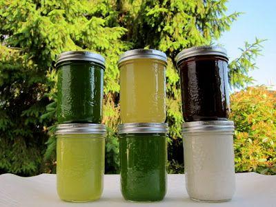 Blue print copy cleanse eat drink entertain pinterest juice cleanse recipes malvernweather Gallery