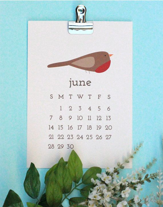 A Unique 2015 Calendar Featuring 12 Different Types Of Birds A