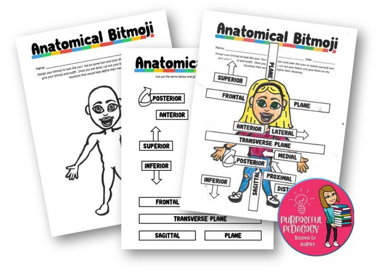 Anatomical Bitmoji Fun Project For Learning Body Planes