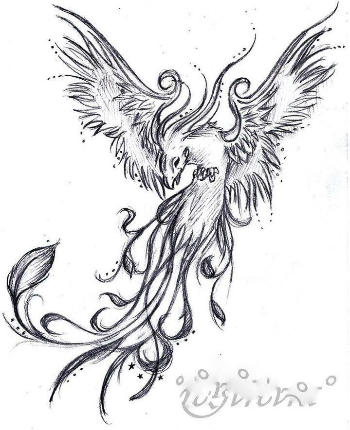 phönix  tätowierungen körperkunst tattoos