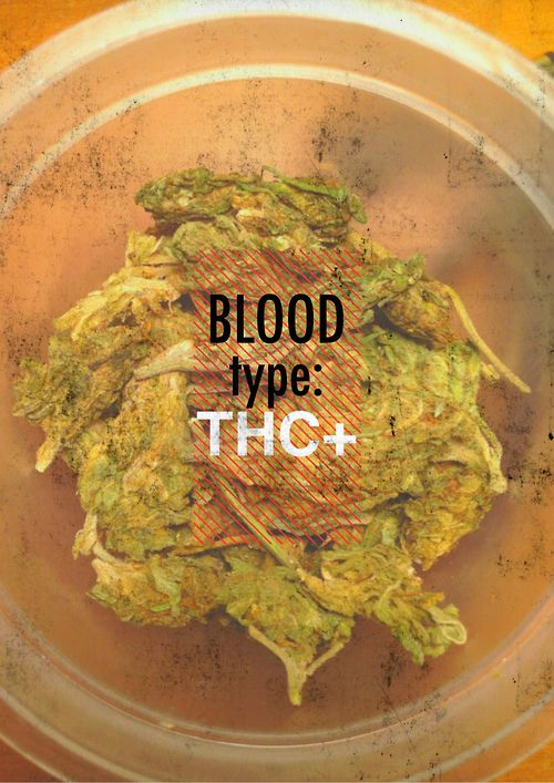 My Blood type is THC+