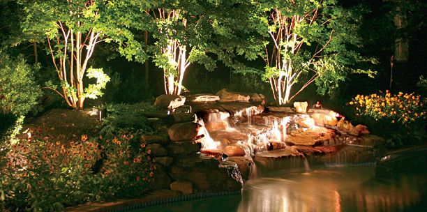 My Dream Garden Is A Place To Sit Out With Friends On An Evening, And So  Lighting Is A Key Feature. I Would Love To Light Up The Trees And Waterfall.