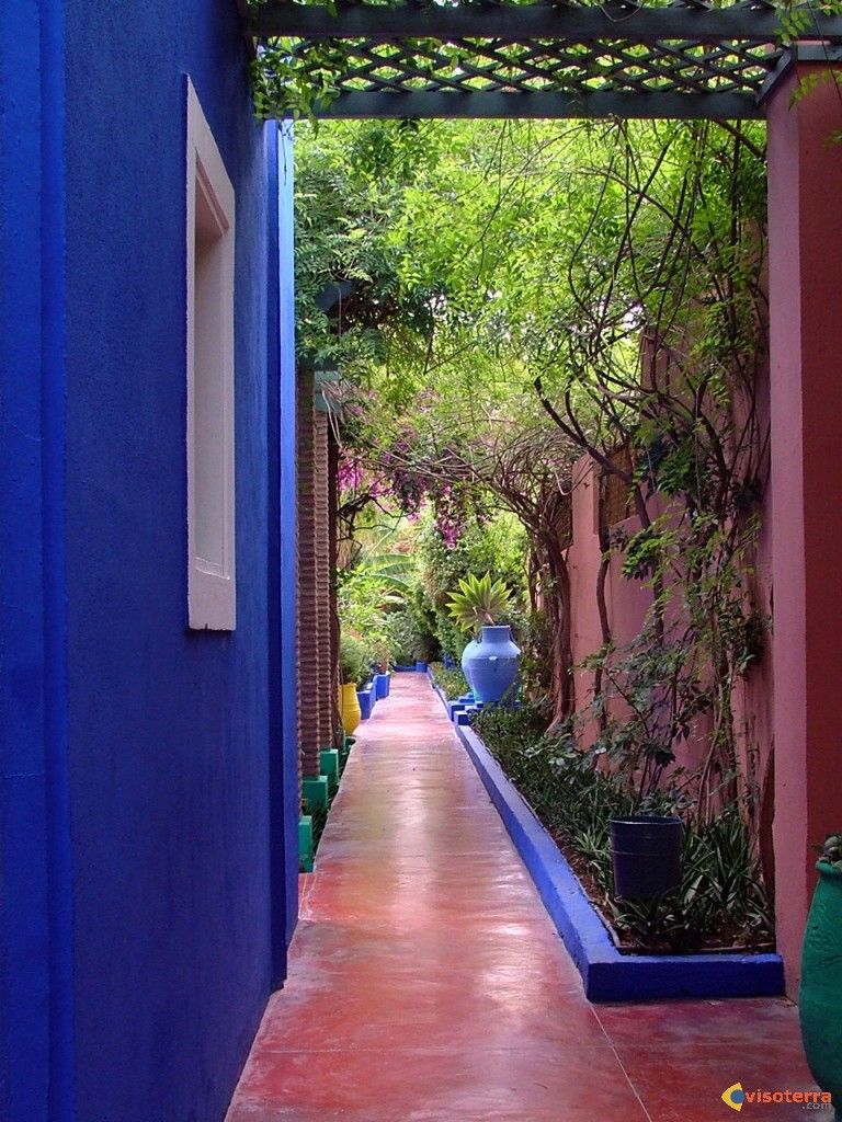 dans le jardin de majorelle propri t d 39 yves saint laurent marrakech garden design. Black Bedroom Furniture Sets. Home Design Ideas