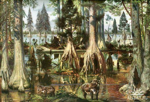 Фото на дев природе в лесу фото 415-144